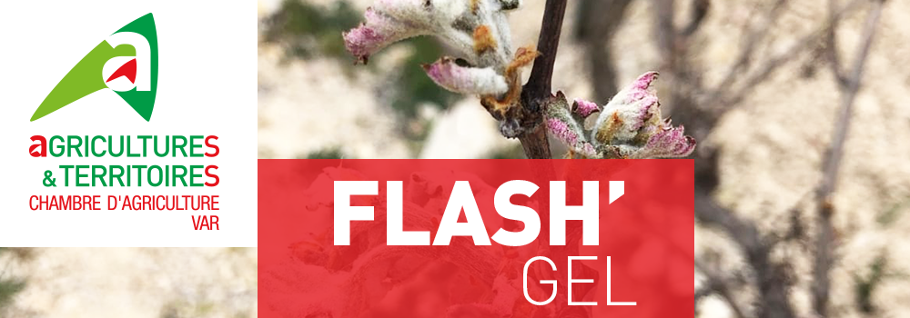 flash gel rouge proagri